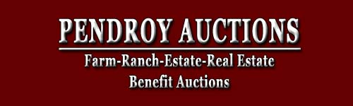 Pendroy Auctions Logo